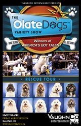 The Olate Dogs: Winners of America's Got Talent